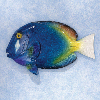 Tropical Fish Wall Art - Blue Tang