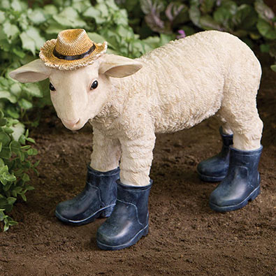 Sweet Lamb In Boots