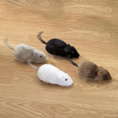 Four Racing Mice