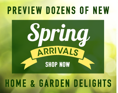 New Spring Preview Arrivals